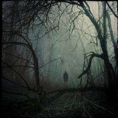 the_twisted_path_majesty